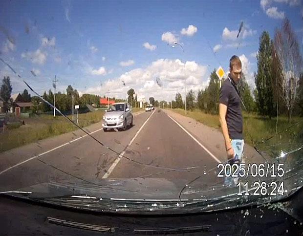 汽车内置相机拍摄车牛相撞场面