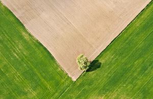 风光摄影:农场的拼图游戏