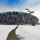 美丽的奥林匹克公园摄影大赛