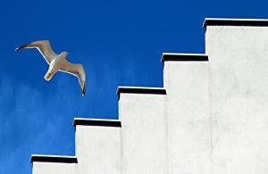 风光摄影:城色影子舞