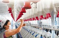 新时代女性电商美丽说的粉丝经济学实践