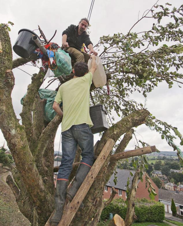 英男子住苹果树上抗议造房砍树