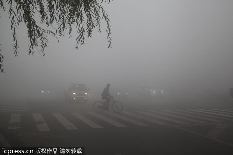 哈尔滨雾霾天气笼罩学校停课公停运