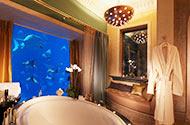 富豪天堂 探访阿联酋最令人惊讶的酒店套房