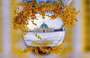 观念摄影:杯装世界