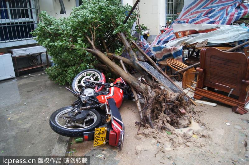 """三亚 海南/超强台风""""海燕""""重创海南三亚 轿车摩托被压路边(3/12)"""