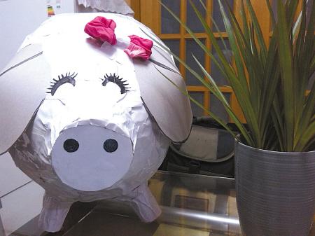 有爱老爸晒玩具小白猪 引来众多网友欢乐围观