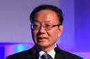 魏建国:中国国际经济交流中心副理事长