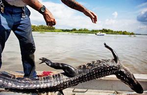 纪实摄影:鳄鱼河
