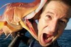 震撼的巨型怪鱼 钓鱼吓个半死