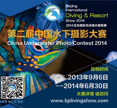 第二届中国水下摄影大赛征稿
