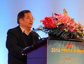 张黎上将为环球时报2014年会作主旨演讲