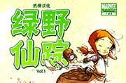 绿野仙踪(1)