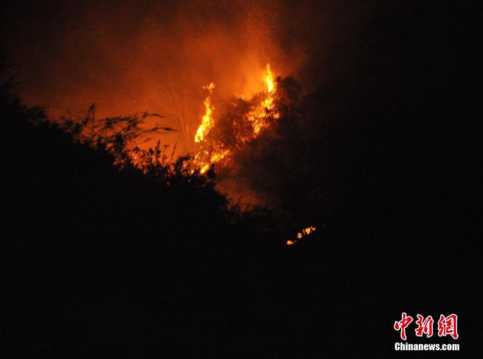 贵州福泉发生森林火灾 5名救火人员遇难