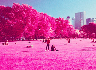 【2013·世界色彩】粉色篇