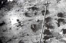南京遭屠城后尸横遍野