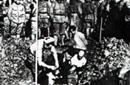 日军活埋中国平民