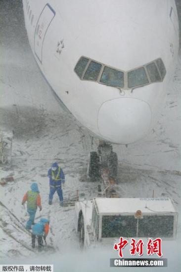 日本东京遭暴雪袭击一片混乱 旅客叫苦连天(图)