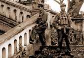 对越自卫反击战:血染的风采