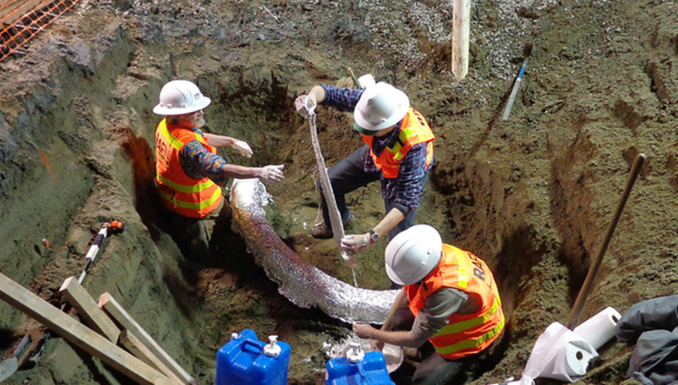 万年/为了保护象牙化石,工作人员使用200多公斤石膏将其包裹起来。...