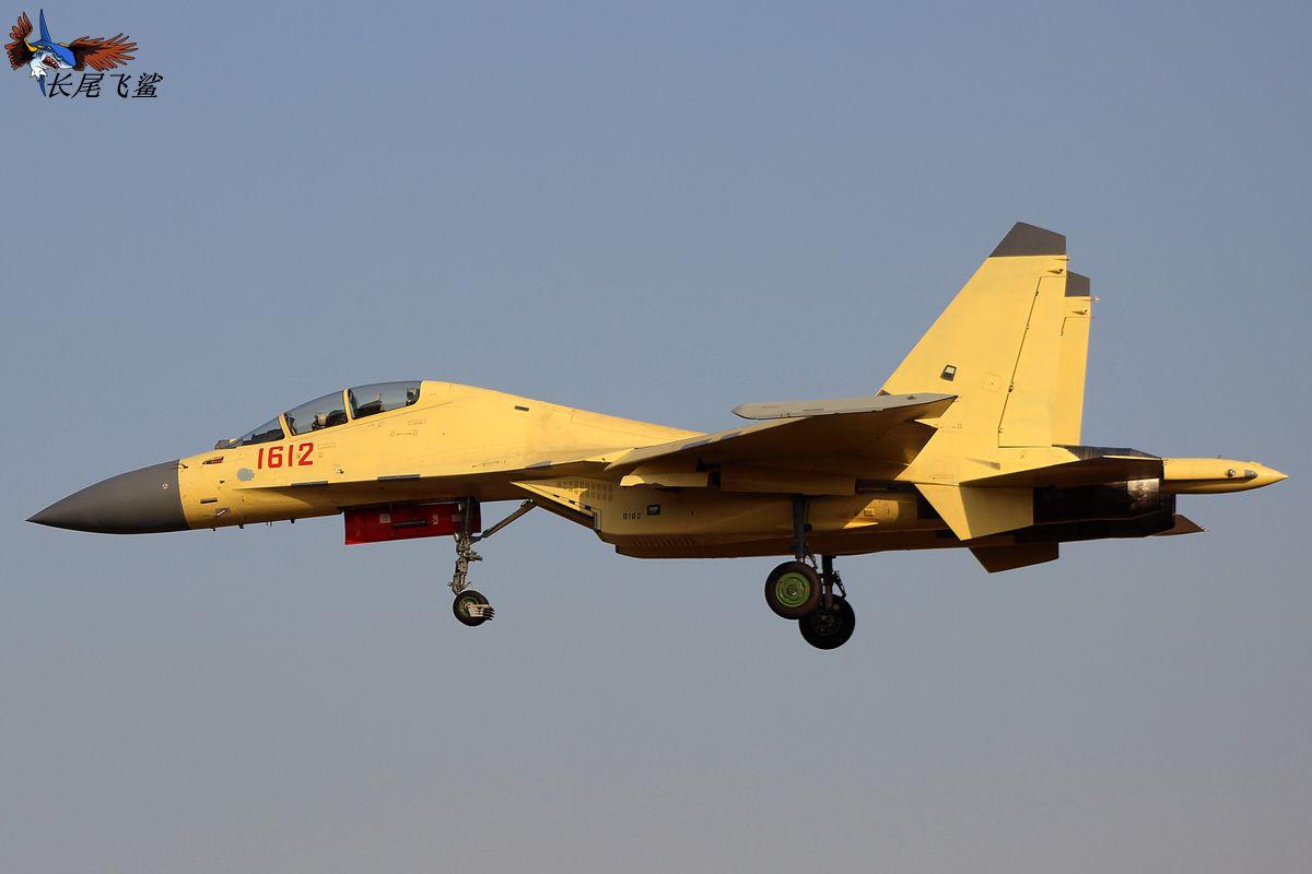 机载有源相控阵雷达_歼16换装先进雷达或已批量生产_军事_环球网
