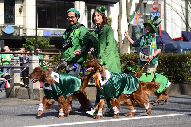 东京上演爱尔兰圣帕特里克节盛大游行活动(图)