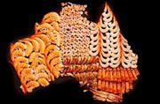 """新西兰艺术家创意制""""美食地图"""""""