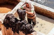 探访摩洛哥天然皮革生产基地