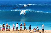 夏威夷驼背鲸携幼崽冲浪被抓拍