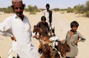 生活在沙漠中的巴基斯坦人