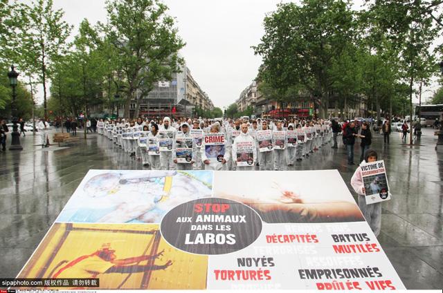 法国动保者广场前抗议制药公司继续动物实验