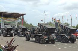 多哥举行54周年国庆阅兵(图)