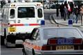 伦敦经典警车跨越历史大巡游