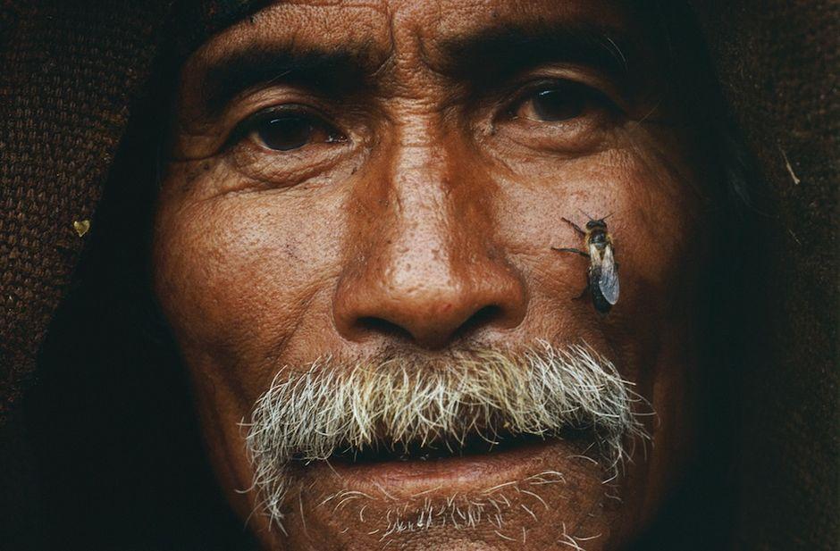 纪实摄影:喜马拉雅悬崖蜂