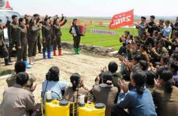 朝鲜文艺宣传队走进田间为插秧者鼓劲
