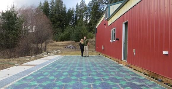 """美企拟打造""""太阳能 同学2亿岁免费观看道路"""" 道路即是大电场"""