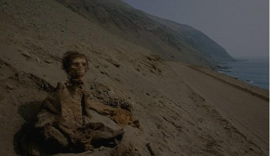图为此前曾在智利发现的新克罗文化的木乃伊。(图片来源:互联网)