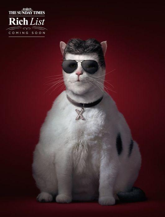 动物创意广告_摄影作品精选