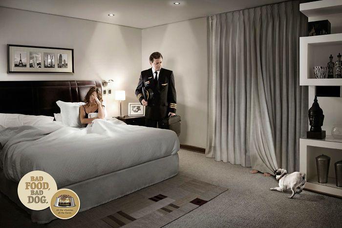 动物创意广告