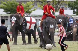 泰国一中学举办足球比赛 人象大战为世界杯助威