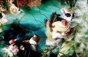 观念摄影:扭动的花屋