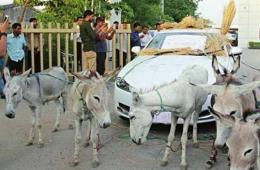 印度男子新买豪车屡出问题 被迫用驴拉车