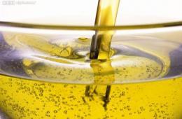 英:地沟油不得喂养动物 政府为家庭废油找出路