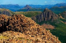 澳为发展商业伐木业 申请退出部分遗产名录
