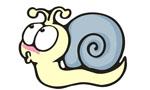 蜗牛黑金号 梦想新起航