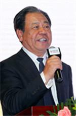 艾丰:中国品牌节主席