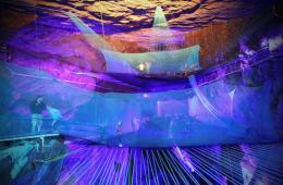 探访世界最大地下蹦床:在地球中心跳跃