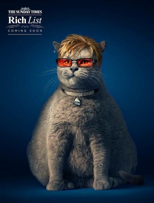 商业摄影:2014猫富豪排行榜