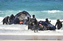环太军演日自卫队展示夺岛能力