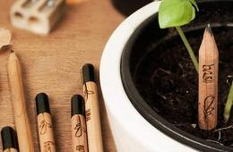 """丹麦公司发明""""生命铅笔"""" 让废物焕发新生机(图)"""